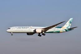 sonnyさんが、成田国際空港で撮影したエティハド航空 787-10の航空フォト(飛行機 写真・画像)