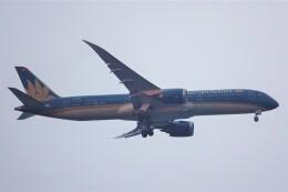 jutenLCFさんが、中部国際空港で撮影したベトナム航空 787-9の航空フォト(飛行機 写真・画像)