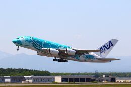 khideさんが、新千歳空港で撮影した全日空 A380-841の航空フォト(飛行機 写真・画像)