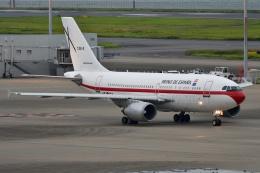 しまb747さんが、羽田空港で撮影したスペイン空軍 A310-304の航空フォト(飛行機 写真・画像)