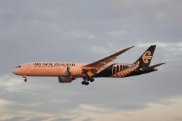 m_aereo_iさんが、成田国際空港で撮影したニュージーランド航空 787-9の航空フォト(飛行機 写真・画像)