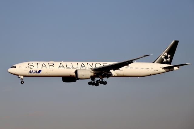 A350XWB-HNDさんが、成田国際空港で撮影した全日空 777-381/ERの航空フォト(飛行機 写真・画像)