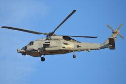 350JMさんが、厚木飛行場で撮影したアメリカ海軍 MH-60R Seahawk (S-70B)の航空フォト(飛行機 写真・画像)