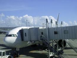しまb747さんが、那覇空港で撮影した全日空 777-281の航空フォト(飛行機 写真・画像)