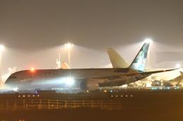 木人さんが、成田国際空港で撮影したエティハド航空 787-10の航空フォト(飛行機 写真・画像)