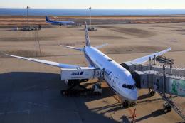 CL&CLさんが、羽田空港で撮影した全日空 787-8 Dreamlinerの航空フォト(飛行機 写真・画像)