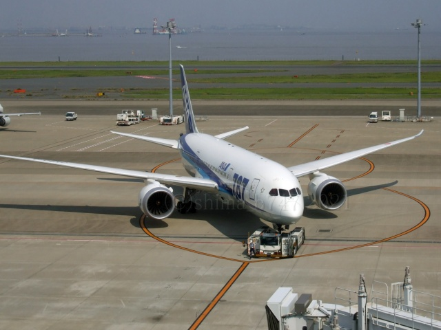 しまb747さんが、羽田空港で撮影した全日空 787-8 Dreamlinerの航空フォト(飛行機 写真・画像)