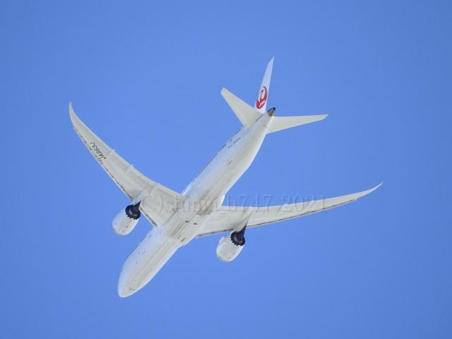 しまb747さんが、成田国際空港で撮影した日本航空 787-9の航空フォト(飛行機 写真・画像)