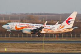 让开我先飞さんが、ハルビン太平国際空港で撮影した中国東方航空 737-79Pの航空フォト(飛行機 写真・画像)
