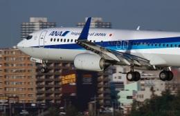 fukusukeさんが、那覇空港で撮影した全日空 737-881の航空フォト(飛行機 写真・画像)