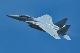 姉ヶ崎疾風さんが、岐阜基地で撮影した航空自衛隊 F-15DJ Eagleの航空フォト(飛行機 写真・画像)