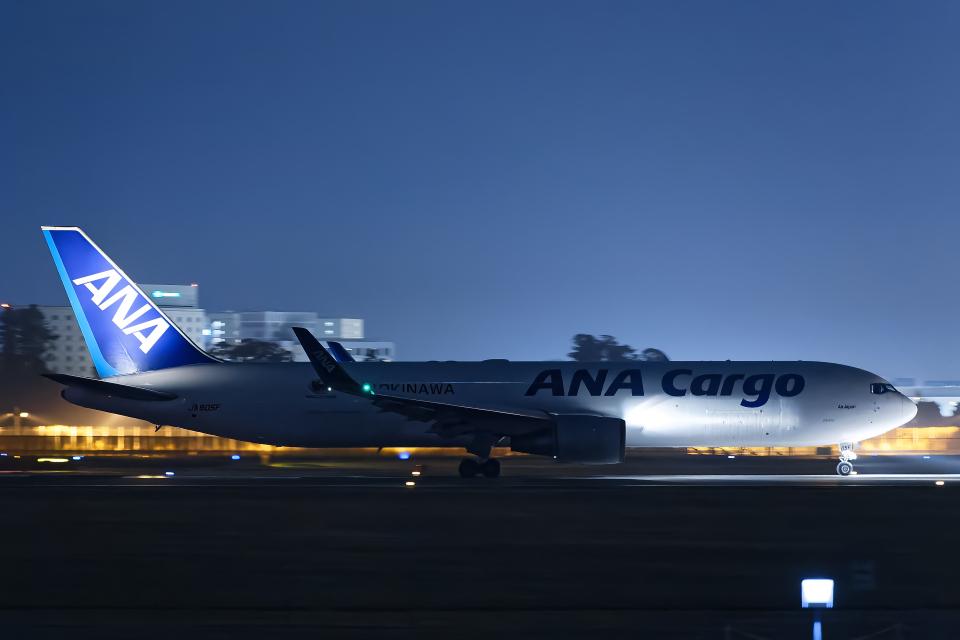 SGR RT 改さんの全日空 Boeing 767-300 (JA605F) 航空フォト