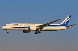 みるぽんたさんが、成田国際空港で撮影した全日空 787-9の航空フォト(飛行機 写真・画像)