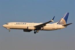 みるぽんたさんが、成田国際空港で撮影したユナイテッド航空 737-824の航空フォト(飛行機 写真・画像)
