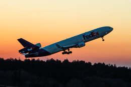 JA8001-Fujiさんが、成田国際空港で撮影したフェデックス・エクスプレス MD-11Fの航空フォト(飛行機 写真・画像)