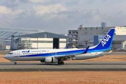 いっくんさんが、伊丹空港で撮影した全日空 737-881の航空フォト(飛行機 写真・画像)