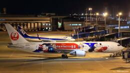 いっくんさんが、中部国際空港で撮影した日本航空 767-346/ERの航空フォト(飛行機 写真・画像)
