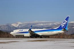 Tomochanさんが、函館空港で撮影した全日空 737-8ALの航空フォト(飛行機 写真・画像)