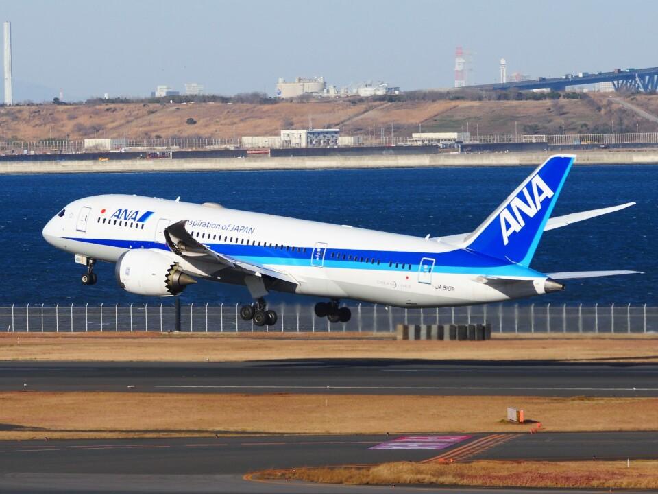 mich_stoneさんの全日空 Boeing 787-8 Dreamliner (JA810A) 航空フォト