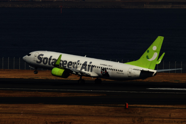 M.airphotoさんが、羽田空港で撮影したソラシド エア 737-86Nの航空フォト(飛行機 写真・画像)