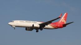 raichanさんが、成田国際空港で撮影した深圳航空 737-87Lの航空フォト(飛行機 写真・画像)