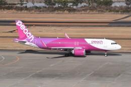 kumagorouさんが、仙台空港で撮影したピーチ A320-251Nの航空フォト(飛行機 写真・画像)