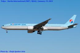 Chofu Spotter Ariaさんが、成田国際空港で撮影した大韓航空 777-3B5の航空フォト(飛行機 写真・画像)