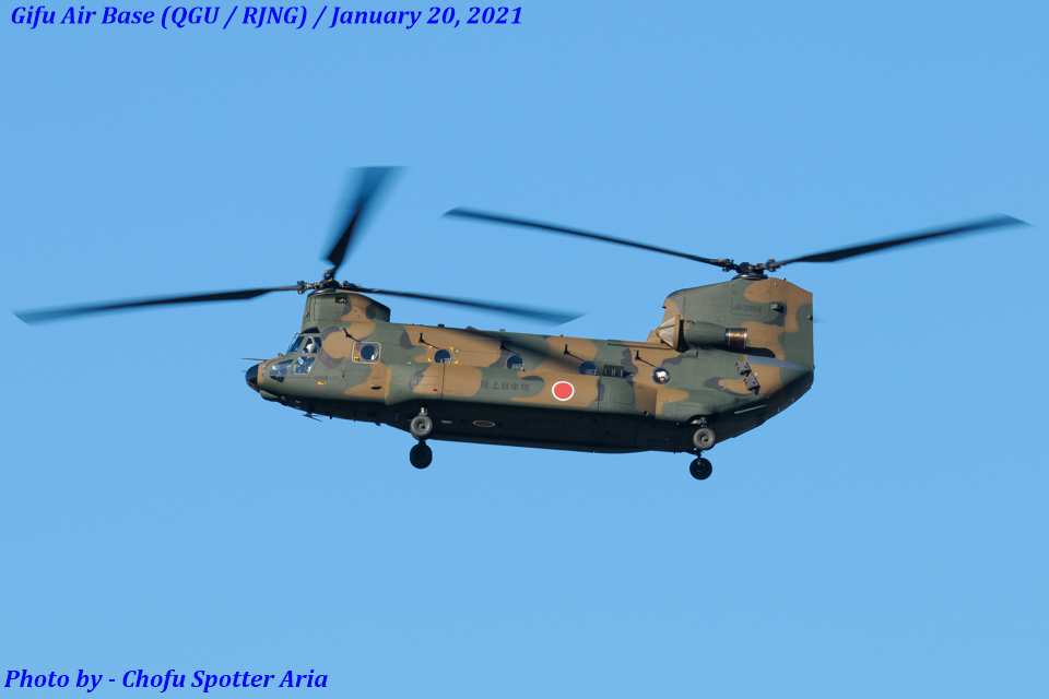 Chofu Spotter Ariaさんの陸上自衛隊 Kawasaki CH-47J Chinook (52954) 航空フォト