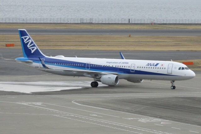 BOEING737MAX-8さんが、羽田空港で撮影した全日空 A321-211の航空フォト(飛行機 写真・画像)