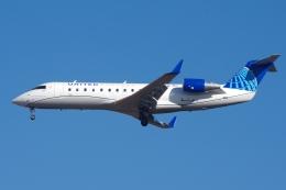 zettaishinさんが、ブラッドレー国際空港で撮影したユナイテッド・エクスプレス CL-600-2B19 Regional Jet CRJ-200LRの航空フォト(飛行機 写真・画像)