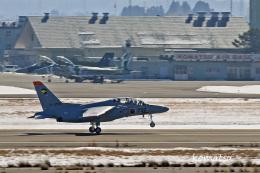 わかすぎさんが、小松空港で撮影した航空自衛隊 T-4の航空フォト(飛行機 写真・画像)