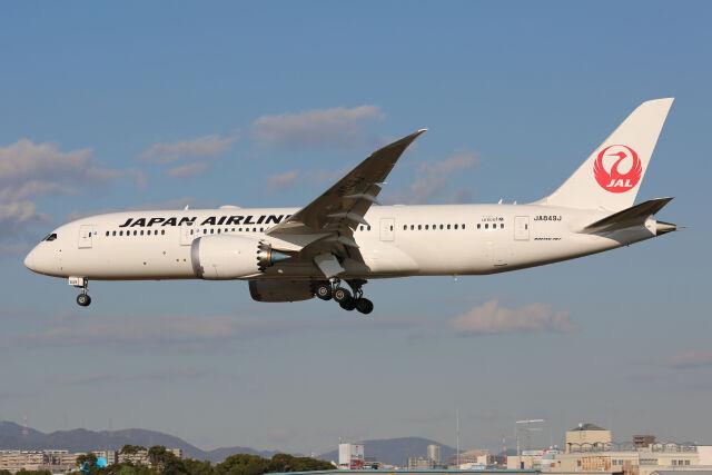 JQ3QYLさんが、伊丹空港で撮影した日本航空 787-8 Dreamlinerの航空フォト(飛行機 写真・画像)