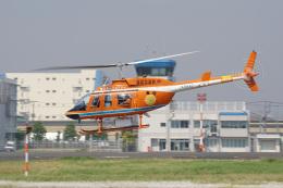 神宮寺ももさんが、東京ヘリポートで撮影した新日本ヘリコプター 206L-3 LongRanger IIIの航空フォト(飛行機 写真・画像)