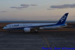 れんしさんが、山口宇部空港で撮影した全日空 787-8 Dreamlinerの航空フォト(飛行機 写真・画像)