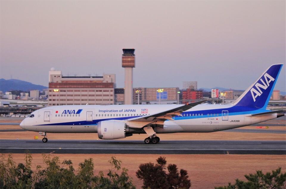 mild lifeさんの全日空 Boeing 787-8 Dreamliner (JA838A) 航空フォト
