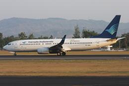 kinsanさんが、アジスチプト国際空港で撮影したガルーダ・インドネシア航空 737-86Nの航空フォト(飛行機 写真・画像)