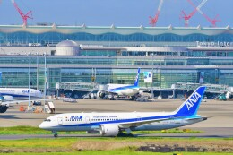 Hiro Satoさんが、羽田空港で撮影した全日空 787-8 Dreamlinerの航空フォト(飛行機 写真・画像)