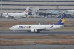 OS52さんが、羽田空港で撮影したスカイマーク 737-81Dの航空フォト(飛行機 写真・画像)