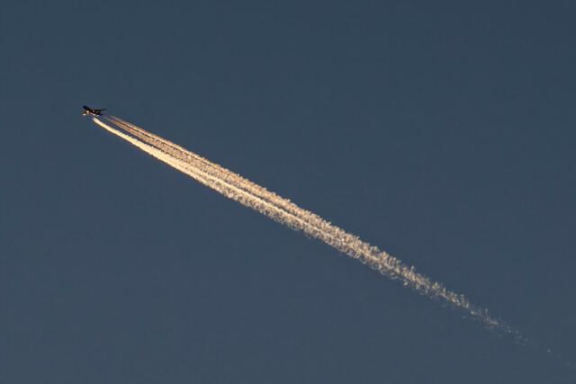 让开我先飞さんが、北京首都国際空港で撮影したエアブリッジ・カーゴ・エアラインズ 747-8HVFの航空フォト(飛行機 写真・画像)