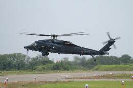 TAK_HND_NRTさんが、小松空港で撮影した航空自衛隊 UH-60Jの航空フォト(飛行機 写真・画像)