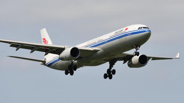 saoya_saodakeさんが、成田国際空港で撮影した中国国際航空 A330-343Eの航空フォト(飛行機 写真・画像)