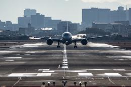 Kenny600mmさんが、伊丹空港で撮影した日本航空 787-8 Dreamlinerの航空フォト(飛行機 写真・画像)