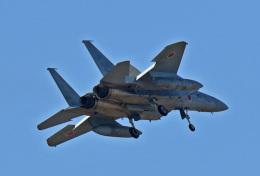 鈴鹿@風さんが、岐阜基地で撮影した航空自衛隊 F-15J Eagleの航空フォト(飛行機 写真・画像)