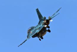 鈴鹿@風さんが、岐阜基地で撮影した航空自衛隊 F-2Bの航空フォト(飛行機 写真・画像)