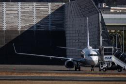 Kenny600mmさんが、伊丹空港で撮影した全日空 737-881の航空フォト(飛行機 写真・画像)
