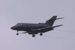 Mr.boneさんが、成田国際空港で撮影したアメリカ企業所有 Hawker 800/1000の航空フォト(飛行機 写真・画像)