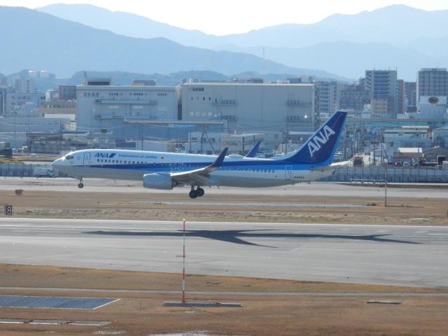 commet7575さんが、福岡空港で撮影した全日空 737-881の航空フォト(飛行機 写真・画像)
