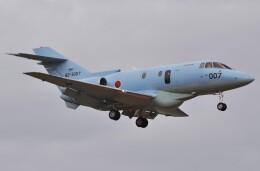 デルタおA330さんが、入間飛行場で撮影した航空自衛隊 U-125A(Hawker 800)の航空フォト(飛行機 写真・画像)