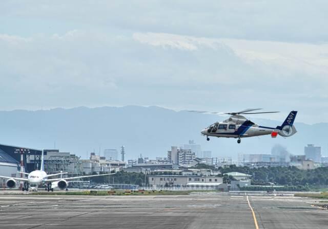 平凡なおっちゃんさんが、伊丹空港で撮影したオールニッポンヘリコプター AS365N2 Dauphin 2の航空フォト(飛行機 写真・画像)