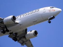 しまb747さんが、羽田空港で撮影した日本トランスオーシャン航空 737-4Q3の航空フォト(飛行機 写真・画像)